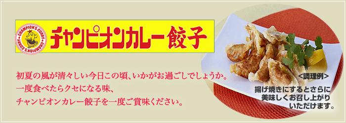 5月のおすすめ『チャンピオンカレー餃子』